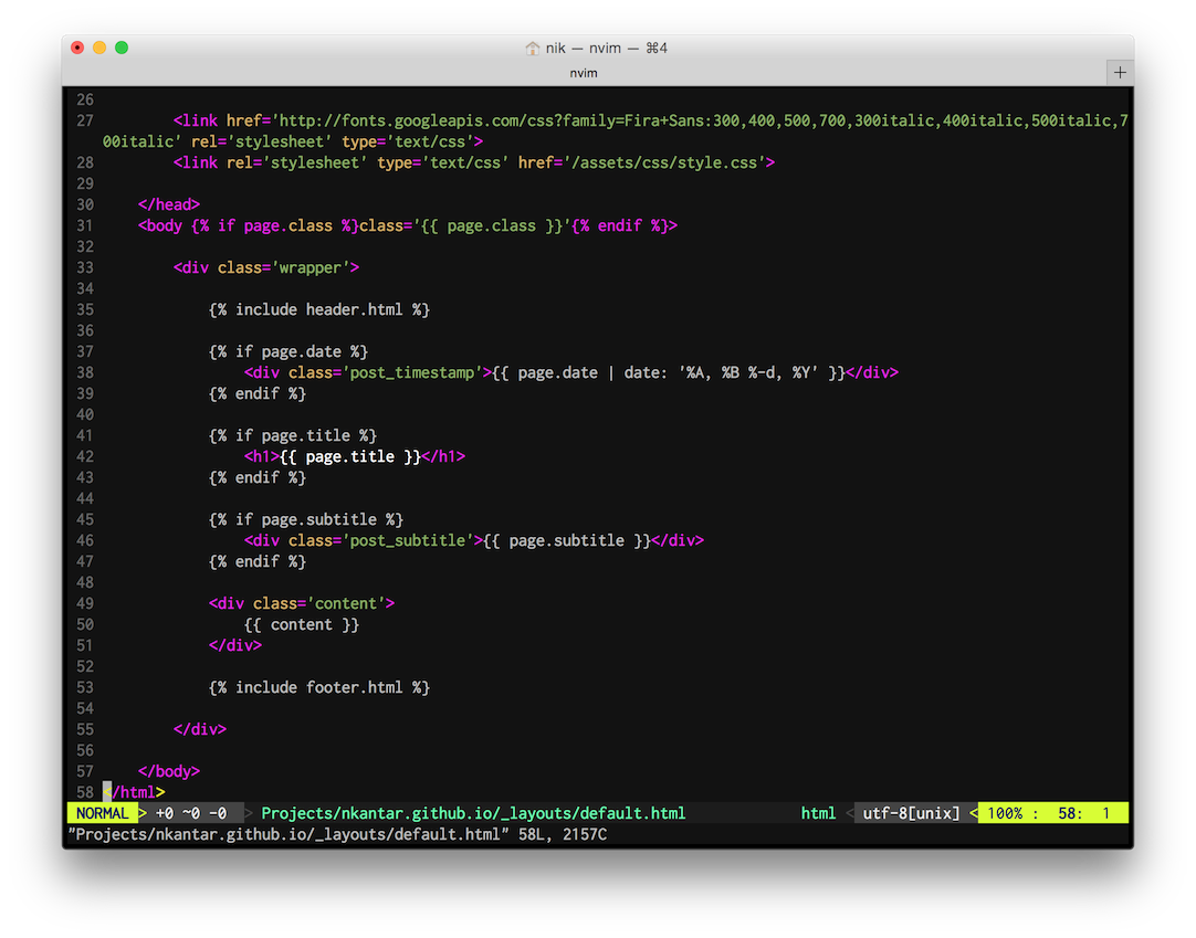 Neovim in the Pro Terminal theme